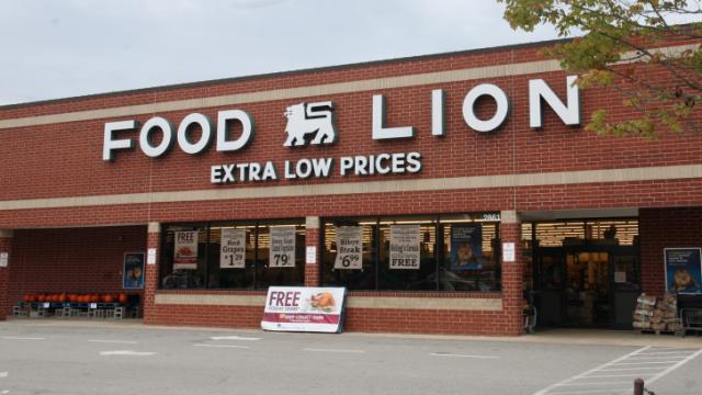 Net Lease Food Lion